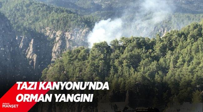 Antalya'daki Tazı Kanyonu'nda orman yangını