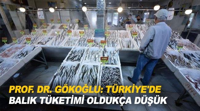 ''Türkiye'de balık tüketimi oldukça düşük''