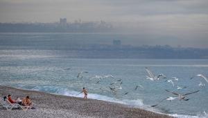 Sahil, turistlere ve martılara kaldı