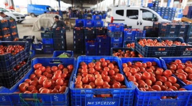 Antalya'dan dünyaya meyve ve sebze ihracı