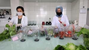 Tüketilen gıdalar laboratuvarda inceleniyor