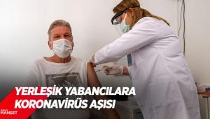 Yerleşik yabancılarakoronavirüsaşısı