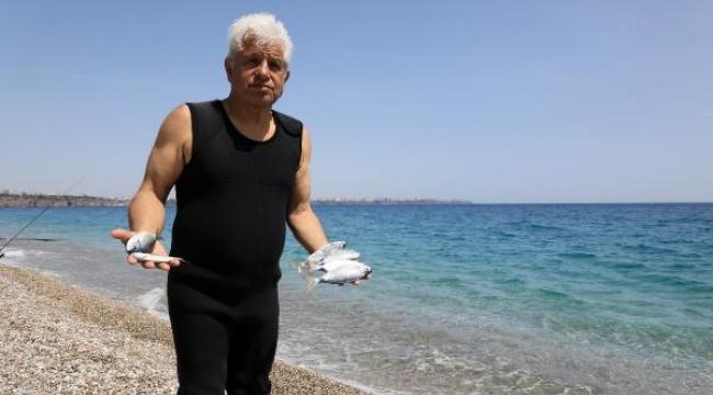 Konyaaltı Sahili'nde 'zehirli ekmek' ile balık avı