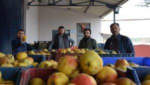 Para etmeyen tonlarca elma ve armut, meyve suyu olacak