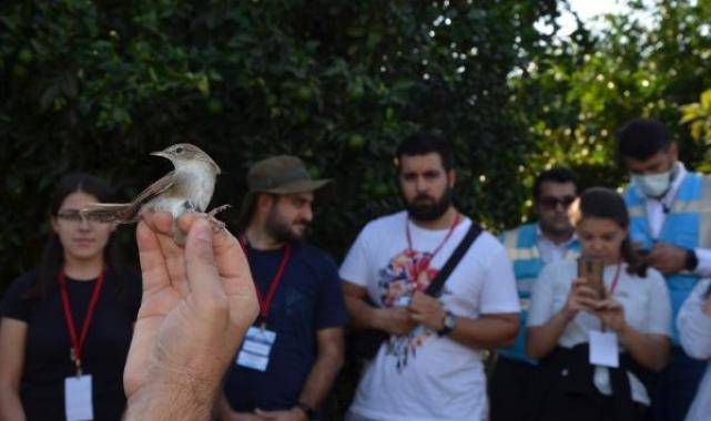 Serik'te 5 bin 200 kuş halkalandı