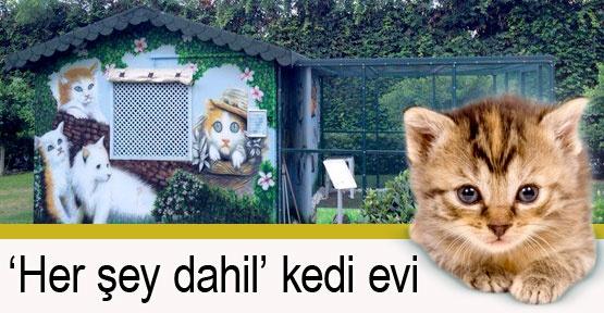 'Her şey dahil' kedi evi